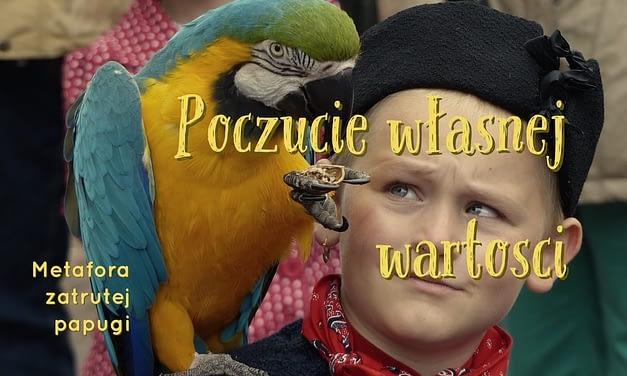 poczucie własnej wartości- jak sobie radzić z niską samooceną i metafora papugi