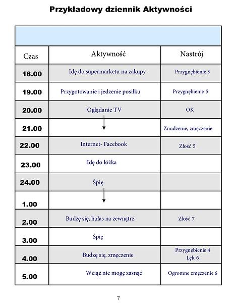 dziennik-aktywnosci-przyklad-2